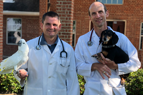 Welcome Pearland Pet Health Center