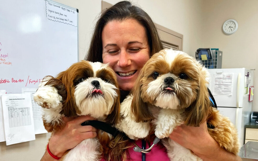 4 New Animal Hospitals Join the #IPCdifference!